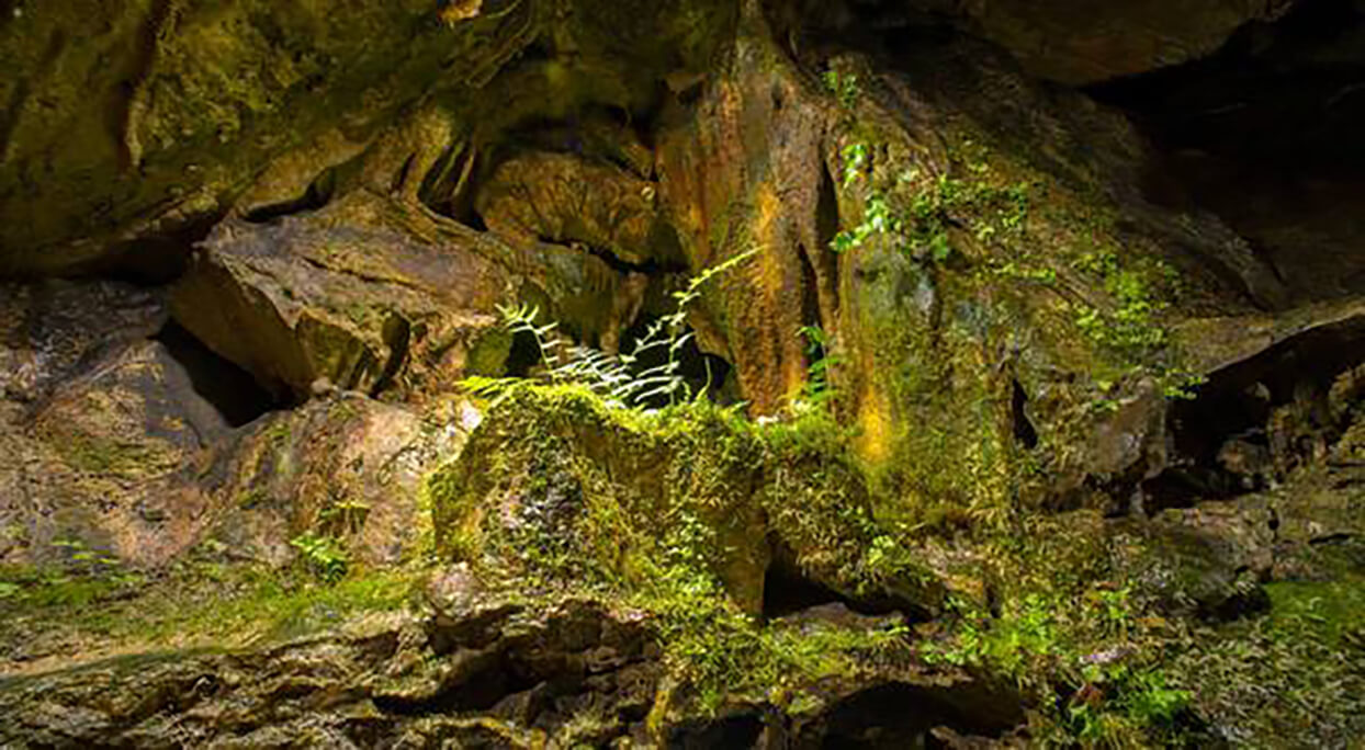grotte ardenne